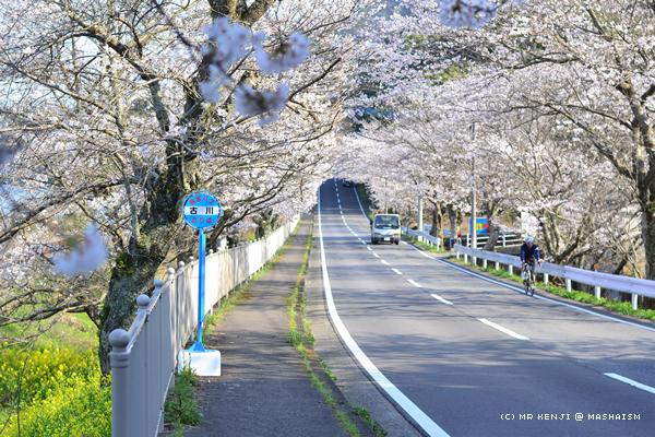 nagasaki2018_2.jpg