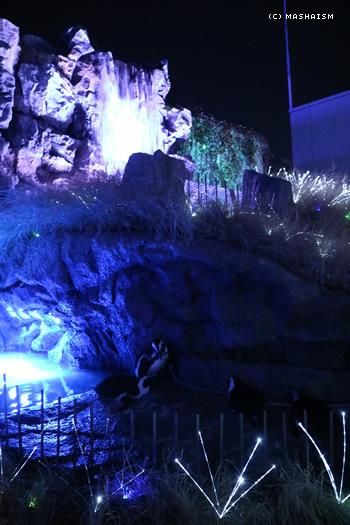 daikanshasai17_63.jpg