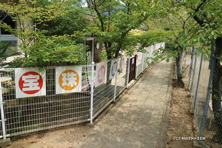 nagasaki2015_331.jpg