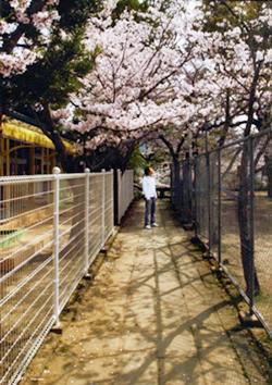 nagasaki2015_332a.jpg