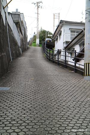 nagasaki2015_378.jpg