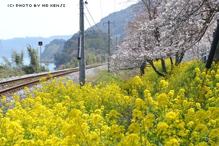 nagasaki207a.jpg